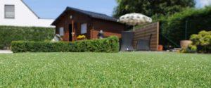 Dog Friendly Artificial Grass
